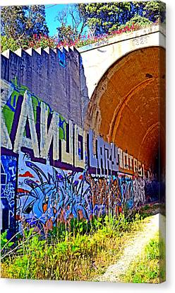 Outside The Abandoned Train Tunnel South Of The Old Train Roundhouse At Bayshore Near San Francisco  Canvas Print by Jim Fitzpatrick