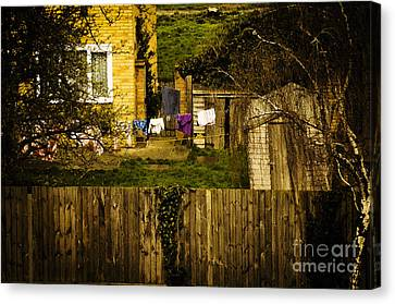 Over The Back Fence Canvas Print by MaryJane Armstrong