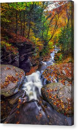 Over The Falls Canvas Print by Mark Papke
