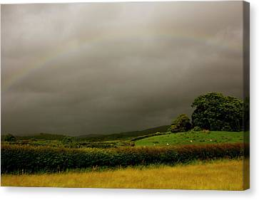 Over The Rainbow Canvas Print by Theresa Selley