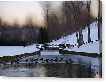Radnor Canvas Print - Overbrook Golf Club In Winter by Bill Cannon