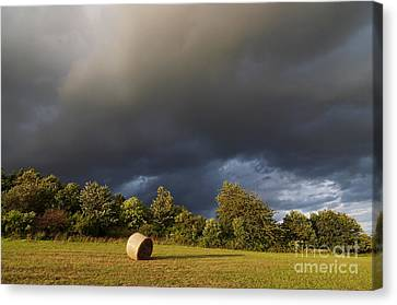Overcast - Before Rain Canvas Print by Michal Boubin