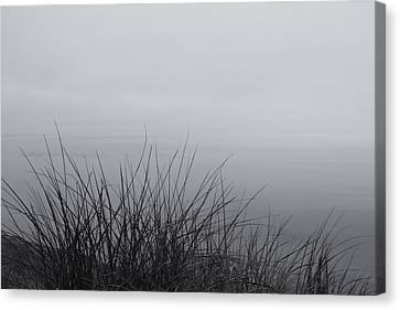 Undefined Canvas Print - Overcoming Reality by Rachel Cohen