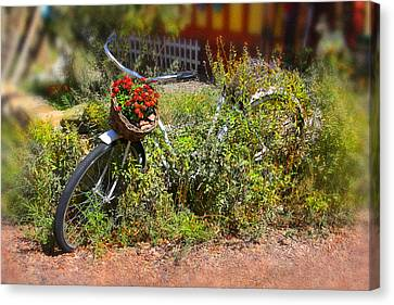Overgrown Bicycle With Flowers Canvas Print by Mike McGlothlen