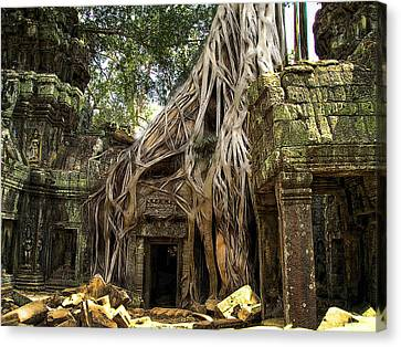 Overgrown Jungle Temple Tree  Canvas Print by EricaMaxine  Price