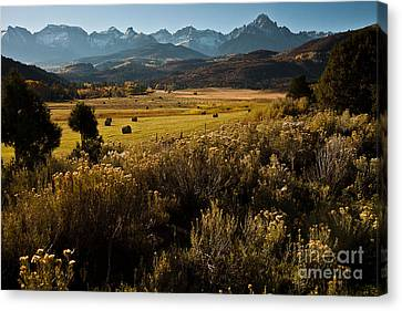 Canvas Print featuring the photograph Overlook To Mt. Sneffles by Steven Reed