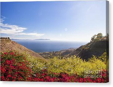 Overlooking Palos Verdes Estates Canvas Print