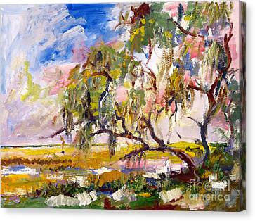Oil Sketch Canvas Print - Overlooking The Marsh On Jekyll Island Georgia by Ginette Callaway