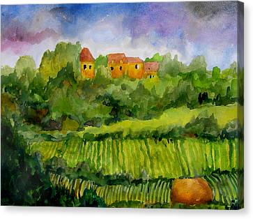 Overlooking The Vines Canvas Print by James Huntley