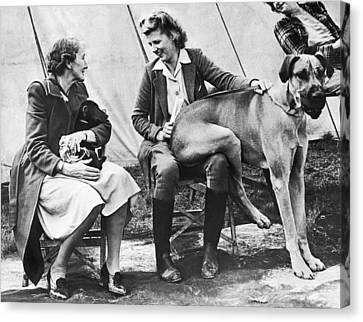 Oversized Lap Dog Canvas Print by Underwood Archives