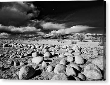Owens Dry Lakebed Canvas Print by Cat Connor