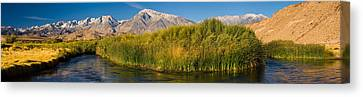 Owens River Flowing In Front Canvas Print