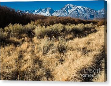 Owens River Valley And Sierra Nevada Range Canvas Print