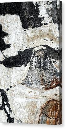 Owl Canvas Print by A K Dayton