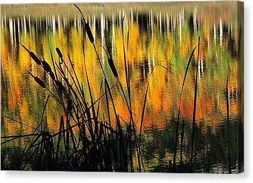 Canvas Print featuring the photograph Owl Creek Pass Fall 3 by Susan Rovira
