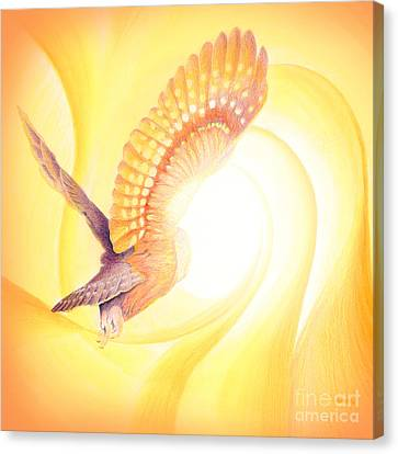 Nature Abstracts Canvas Print - Owl Going Into The Light by Robin Aisha Landsong