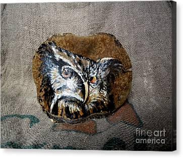 Owl Canvas Print by Ildiko Decsei
