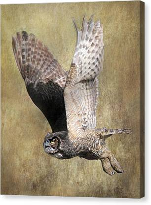 Determination Canvas Print - Owl In Flight by Angie Vogel