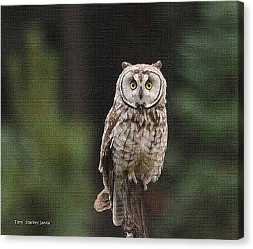 Canvas Print featuring the photograph Owl In The Forest Visits by Tom Janca