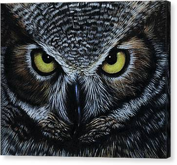 Canvas Print featuring the drawing Owl by Natasha Denger