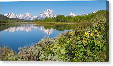 Canvas Print featuring the photograph Oxbow Bend Wildflowers In Spring by Aaron Spong