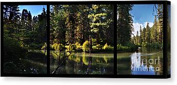 Oxbow Triptych Canvas Print by Peter Piatt