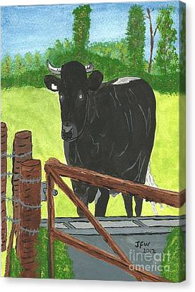 Canvas Print featuring the painting Oxleaze Bull by John Williams