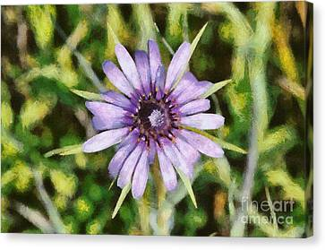Oyster Plant Canvas Print by George Atsametakis
