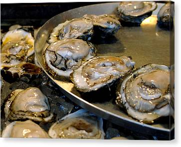 Oysters On The Half Shell Canvas Print by Ellis C Baldwin