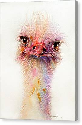 Ozzy The Ostrich Canvas Print