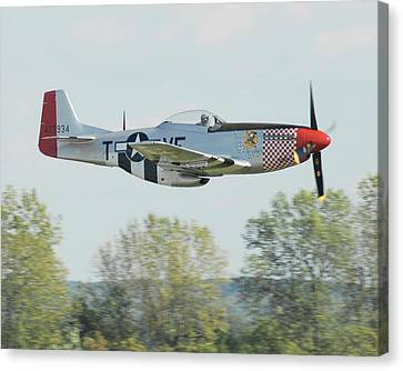 P-51d Mustang Shangrila Canvas Print by Alan Toepfer