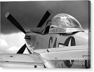 P51 D Canvas Print by Remy NININ
