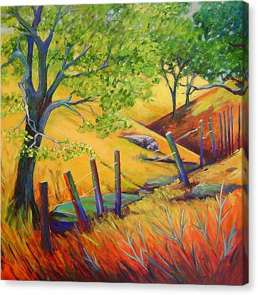 Pacheco Oak Valley Canvas Print by Stephanie  Maclean