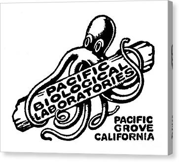 Pacific Biological Laboratories Of Pacific Grove Circa 1930 Canvas Print by California Views Mr Pat Hathaway Archives