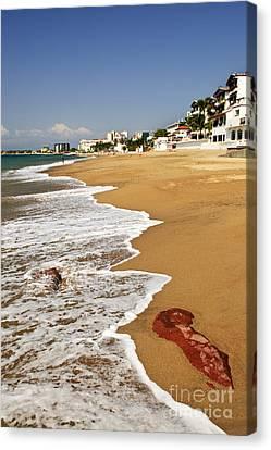 Pacific Coast Of Mexico Canvas Print by Elena Elisseeva