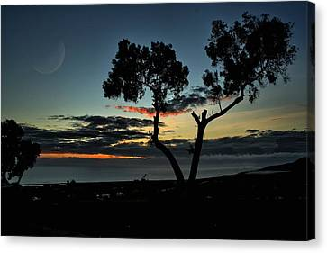 Pacific Evening Canvas Print by Michael Gordon