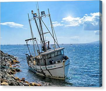 Pacific Maid 2 Canvas Print by Dawn Eshelman