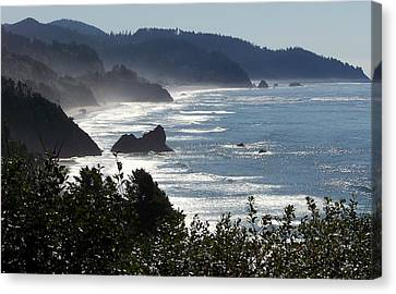 Pacific Mist Canvas Print by Karen Wiles