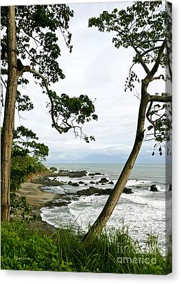 Pacific Outlook Canvas Print by Michelle Wiarda