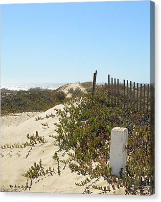 Pacific Pathway Canvas Print