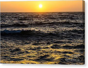 Sonoma Coast Canvas Print - Pacific Reflection by CML Brown