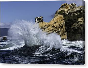Pacific Splash Canvas Print by Tim Moore