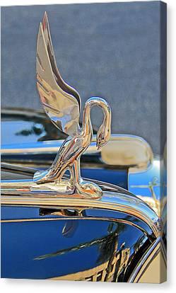 Packard Hood Ornament Canvas Print by Ben and Raisa Gertsberg