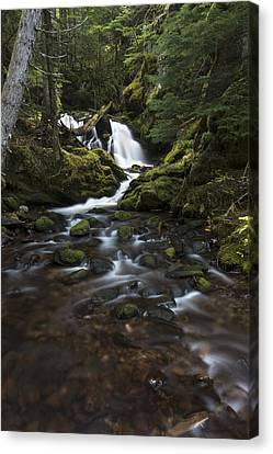 Packer Falls #3 Canvas Print