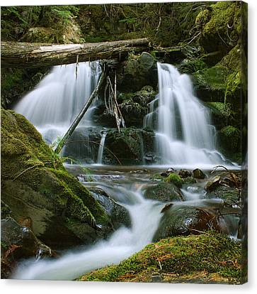Packer Falls Canvas Print