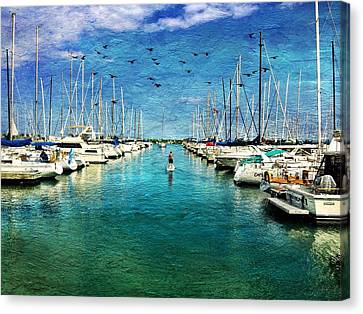 Paddle Boarder  In The Harbor Canvas Print by Eleanor Abramson