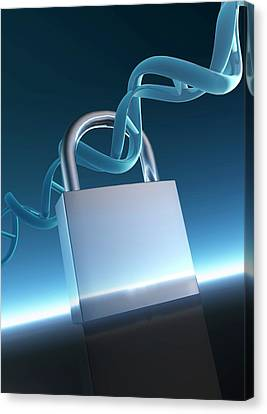 Padlock And Double Helix Canvas Print by Victor Habbick Visions