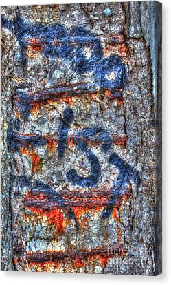 Paint And Rust 25 Canvas Print by Jim Wright