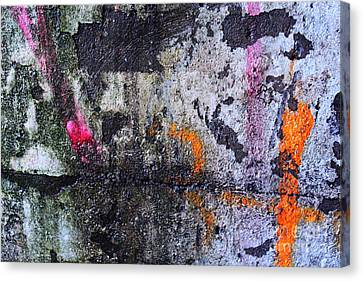 Paint And Rust 31 Canvas Print by Jim Wright