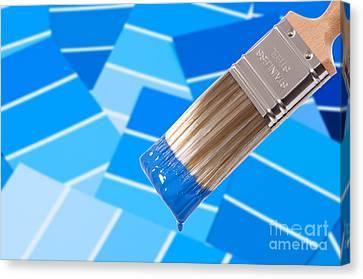 Paint Brush - Blue Canvas Print by Amanda Elwell